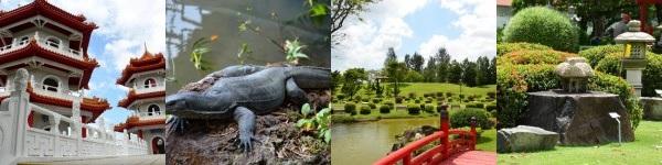 Сингапурский Японский и Китайский сады, Музей черепах