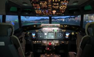Авиасимулятор (Flight Experience)
