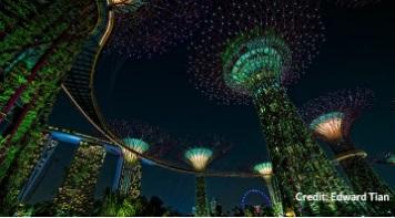 Бесплатная экскурсия по Сингапуру. City Sights Tour-Gardens by the Bay