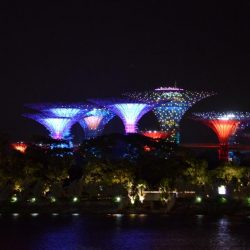 Gardens by the Bay 8