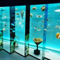 Музей Естественной Истории «Lee Kong Chian Natural History Museum» (LKCNHM)