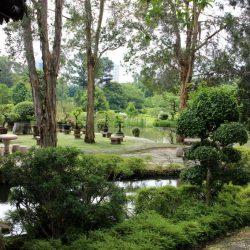 Сингапурский Японский и Китайский сады, Музей черепах (Singapore Chinese Garden & Japanese Garden, The Live Turtle And Tortoise Museum)