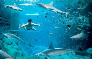 Аквапарк «Бухта приключений» на острове Сентоза