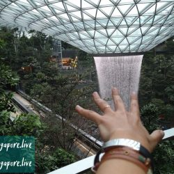 Джевел аэропорт Чанги в Сингапуре