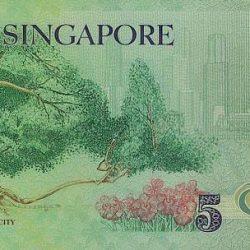 Купюра 5 сингапурских доллара, обратная сторона