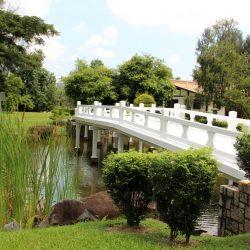 Сингапурский Японский и Китайский сады, Сад бонсай и Музей черепах 1