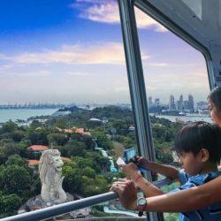 Смотровая башня Тайгер Скай Тауэр (The Tiger Sky Tower)