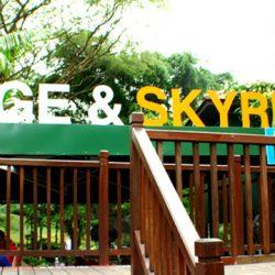 Skyline Sentosa Luge & Skyride